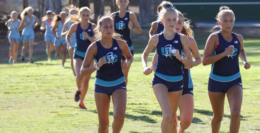 UC High Cross Country Strides to Victory