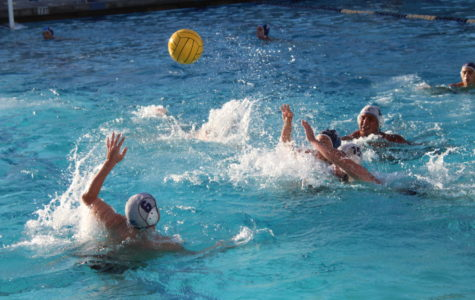 Boys Waterpolo Working to End the Season on a Positive Note