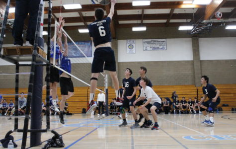 Boys Volleyball Team Adjusts to Tougher League