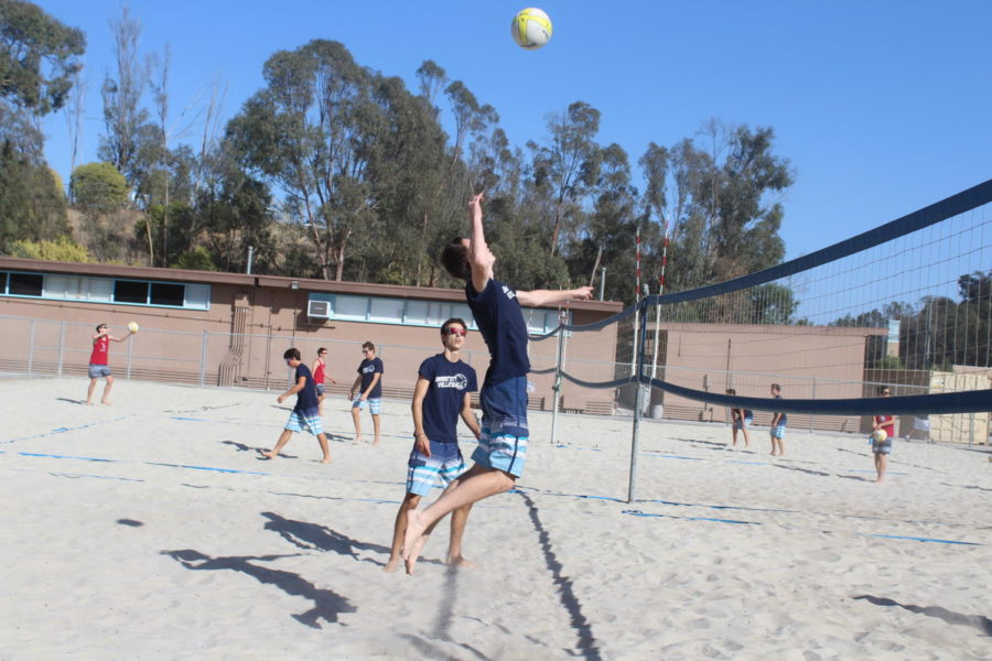 Boys Beach Volleyball Serves Up Success