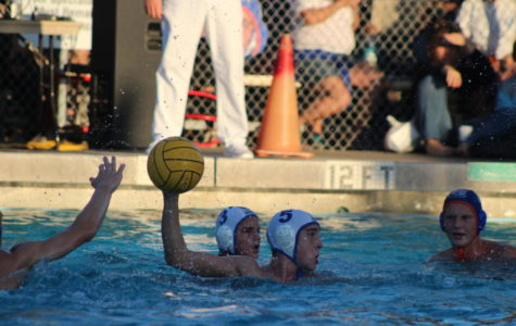 Boys Water Polo Counters Out Another Productive Season