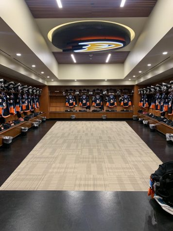 Gulls Take Flight in One of a Kind Season